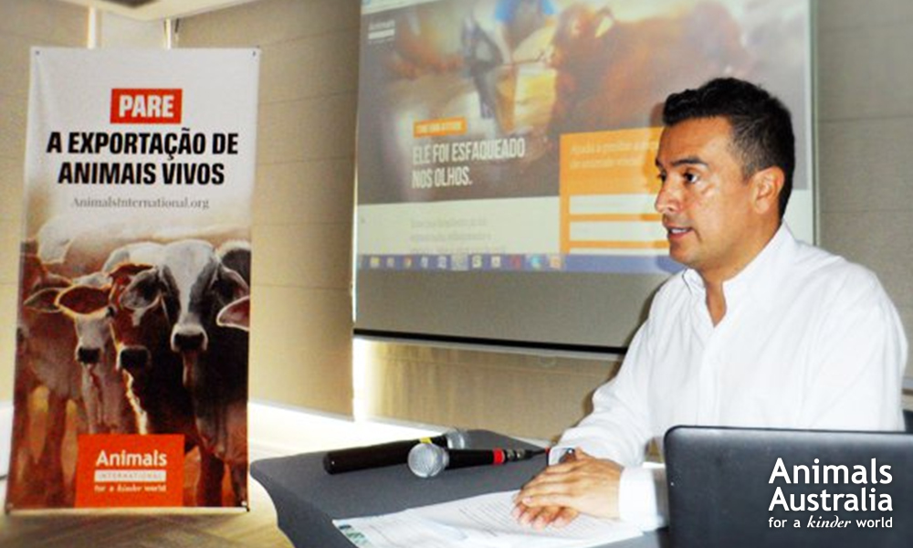 Luis Sarmiento, Animals International's Latin American Director, hosting a media conference in Brazil