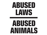 Abused laws. Abused animals.