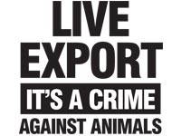 Live export: it's a crime against animals
