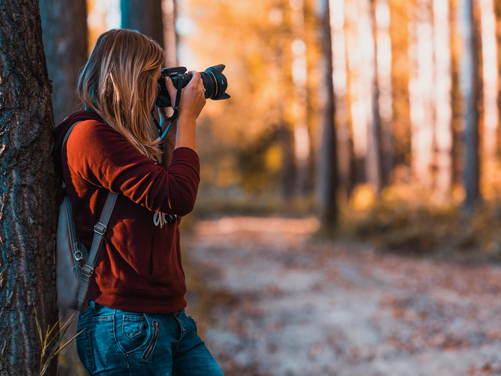 Take photos — from a distance.