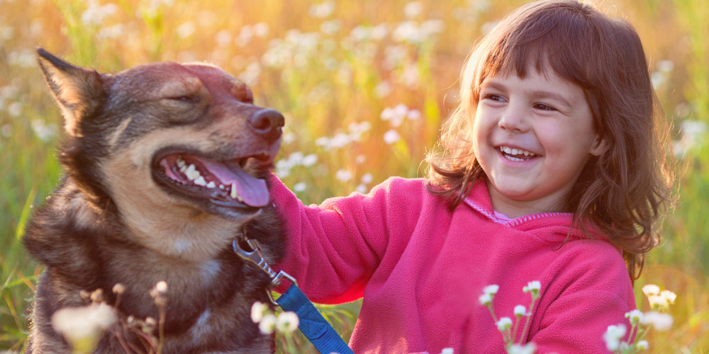 Study finds dogs could help kids' development