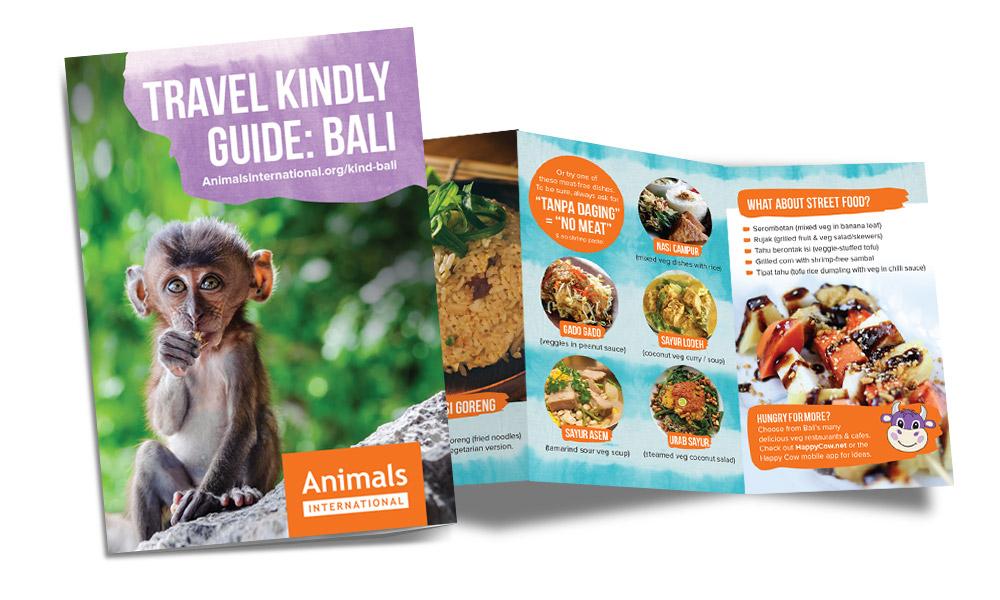 Bali dog meat - Bali kind travel guide